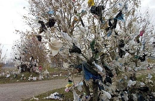 090923plasticbags